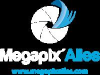logo megapixailes